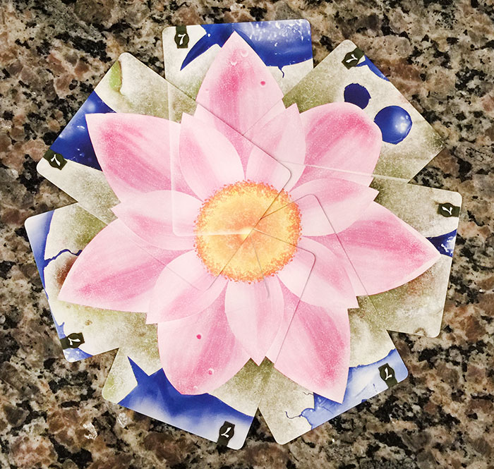 Lotus winter flower